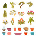 Set of green house plants with pots with Leaf and flowers in cartoon style. Flowerpot isolated objects for creation