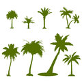 Set green palm tree silhouettes isolated white Royalty Free Stock Image