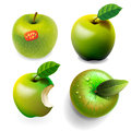 Set of green ripe apples four various view eps image Royalty Free Stock Photography