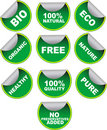 Set of green vector labels Royalty Free Stock Image
