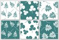 Set of green and white seamless patterns with leaves. Royalty Free Stock Photo