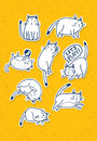 Set of Hand Drawn Cats. Funny Vector Pet Sketch Concept