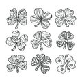 Set of hand drawn monochrome shamrock isolated on white background.