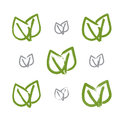 Set of hand-drawn vector green eco leaves icons Royalty Free Stock Photo