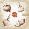Set of hand drawn vegetables. Tomato, onion, sliced cucumber and garlic. Royalty Free Stock Photo
