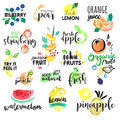 Set of hand drawn watercolor labels and stickers of fruit.