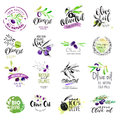 Set of hand drawn watercolor labels and stickers of olive oil