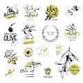 Set of hand drawn watercolor stickers and badges of olive oil