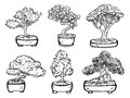 Set of handdrawn isolated decorative asian bonsai trees.