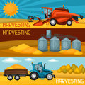 Set of harvesting banners. Combine harvester, tractor and granary. Agricultural illustration farm rural landscape Royalty Free Stock Photo