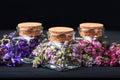 Set of healing herbs Royalty Free Stock Photo