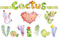 Set of high quality hand painted cactus watercolor cacti