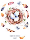 Set of high quality hand painted watercolor bird nest with eggs and feathers