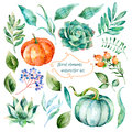 Set of high quality hand painted watercolor elements for your design