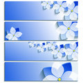 Set of horizontal banners blue with blossoming sakura