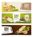 Set of horizontal banners with soy food products isolated on color background vector illustration Royalty Free Stock Photo