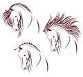 Set of 3 horse heads Royalty Free Stock Photo