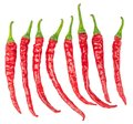 Set of hot red chili peppers isolated Royalty Free Stock Photo