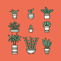 Set of houseplants in pots vector illustration Stock Image