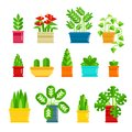 Set of houseplants vector icons in flat design. Various plants collection in flowerpots isolated on white background
