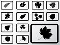 Set icons - 12B. Leaves Royalty Free Stock Photography