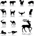 Set icons animals silhouettes animals all parts world your design business Royalty Free Stock Photos