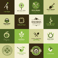Set of icons for organic food and restaurants vector Royalty Free Stock Photos
