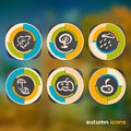 Set of icons on a theme of autumn on a background of defocused a leaves Royalty Free Stock Image