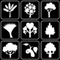Set of icons (trees) Royalty Free Stock Photo