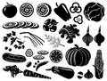 Set of icons of vegetables Royalty Free Stock Photography