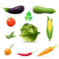 Set of icons vegetables vector illustration Royalty Free Stock Image