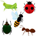 Set of insects 2 Royalty Free Stock Image