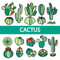 Set of isolated colorful cactus and succulents in black outline.
