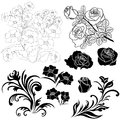Set of isolated floral elements for design Royalty Free Stock Photo