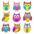 Set of isolated funny owls in color