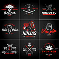 Set of Japan Ninjas Logo. Katana weapon insignia design. Vintage ninja mascot badge. Martial art Team t-shirt Royalty Free Stock Photo