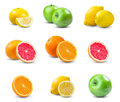Set of juicy fruits - orange, lemon, grapefruit, green apple. rich with vitamins. isolated on white background.