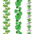 Set of jungle leaves seamless borders. Tropical summer foliage pattern. Rainforest botanical concept. Vector