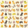 Set Of Kittens. Editable Vector Illustration Royalty Free Stock Images