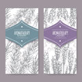 Set of 2 labels with lavender and rosemary