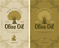Set of labels for olive oils Royalty Free Stock Photo
