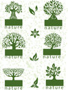 Set labels with trees of six Royalty Free Stock Photography