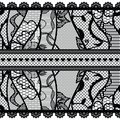 Set of lacy vintage trims vector illustration Royalty Free Stock Image
