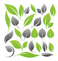 Set of leaf design elements Stock Photography