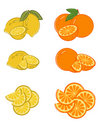 Set of lemon and orange slices Stock Images
