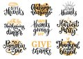 Set with lettering and illustrations for Thanksgiving Day. Give Thanks, Pumpkin Pie, vector drawn and handwritten labels