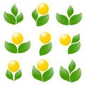 Set of logos - plant. Stock Photo