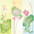 Set of lotus patterns Royalty Free Stock Image