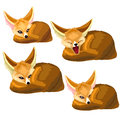 Set of lying sand foxes and one yawns. Vector