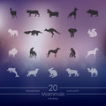 Set of mammals icons modern for mobile interface on blurred background Royalty Free Stock Photo
